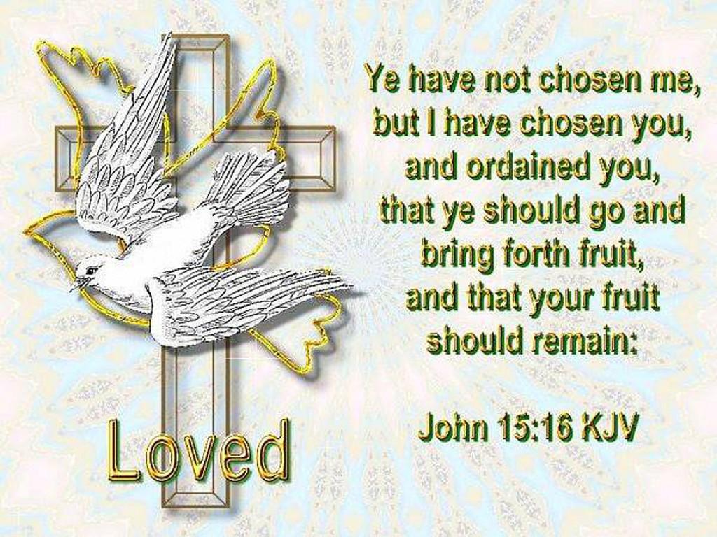 HOLY SPIRIT (51)